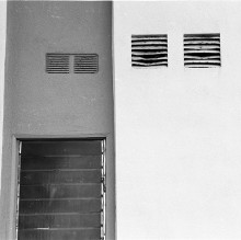 Louvered windows and leaf